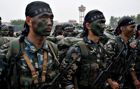 Image result for Quân Trung CỘng động binh?
